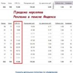 Кейс: Настройка рекламной кампании в поиске Яндекс Директ – Корсет Waist Trainer