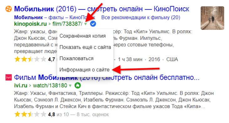 Какие знаки могут быть на поиске Яндекса