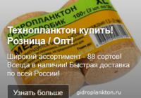 Ведение рекламной кампании в Яндекс Директ - Технопланктон