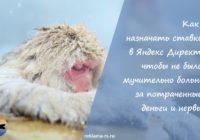 Как назначать ставки в Яндекс Директ