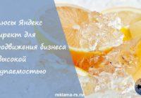 Плюсы Яндекс Директ для продвижения бизнеса с высокой окупаемостью